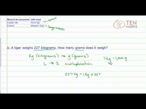 Estimate, Measure, and Convert Mass in Metric Units