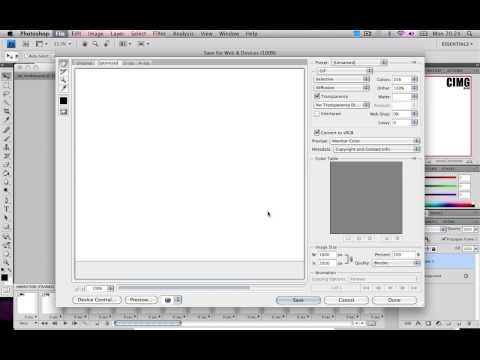 Photoshop Basics : How to make basic animation / moving images