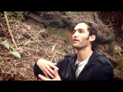 Return to Awe.  Jason Silva + Melodysheep