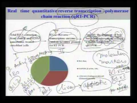 Mod-01 Lec-10  Lecture-10-Introduction to Biomaterials