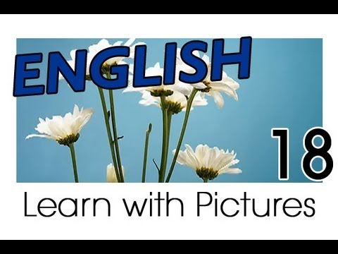Learn English - English Plants Vocabulary