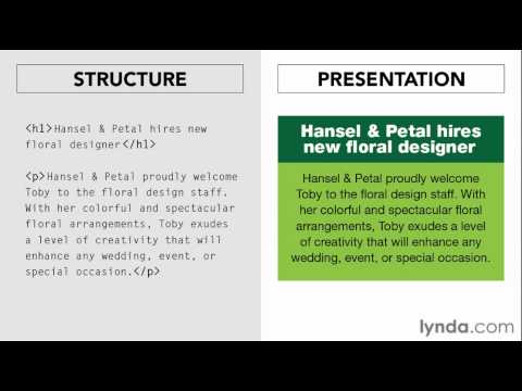 Illustrator overview: Understanding structure and presentation | lynda.com