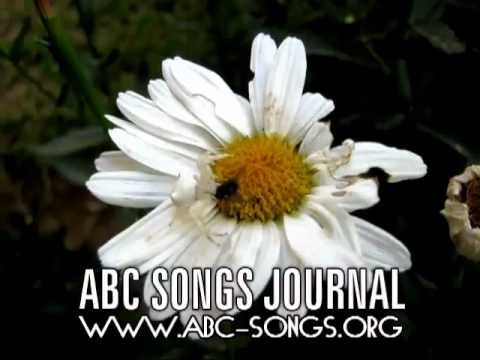 Twinkle Twinkle Little Star Song companion video by ABC songs journal