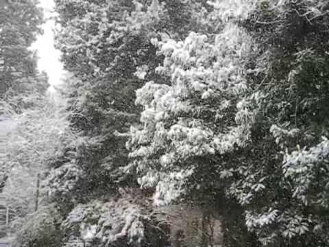 SNOW for Julia! (Old Videos w/Sean, 2007 Seattle Snow)