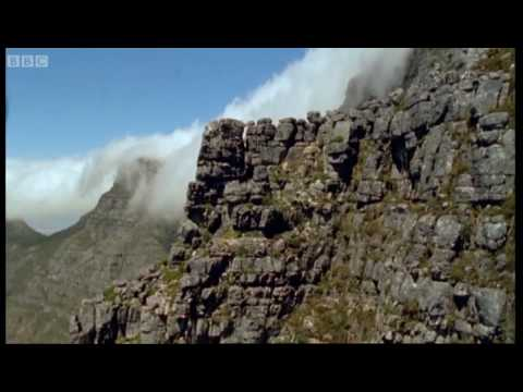 Cape highlands of South Africa - Wild Africa - BBC