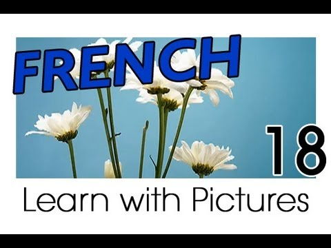 Learn French - French Plants Vocabulary