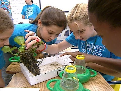 Wetland Watchers: Kids Care for Their Environment
