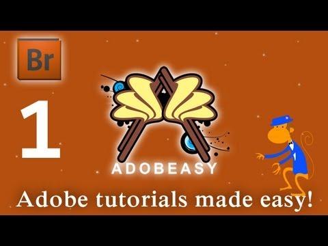 Create A Flash Picture Gallery With Adobe Bridge CS4
