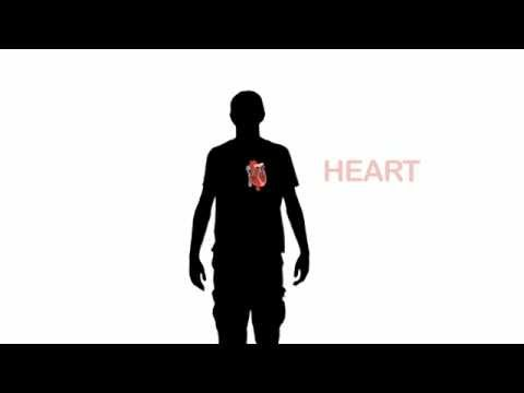 Learn English Words: Heart