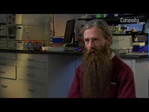 Aubrey de Grey: Extending Life