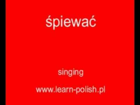 Learning  Polish  Online  Lessons. Scuola di Lingua Polacca.