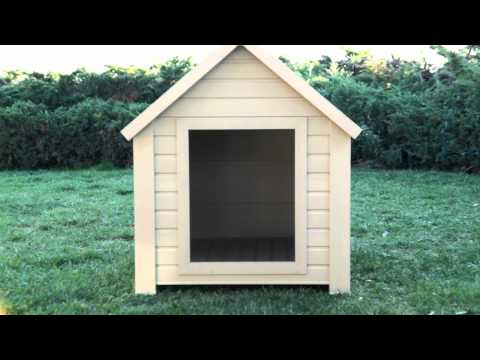 New Age Dog House Overview
