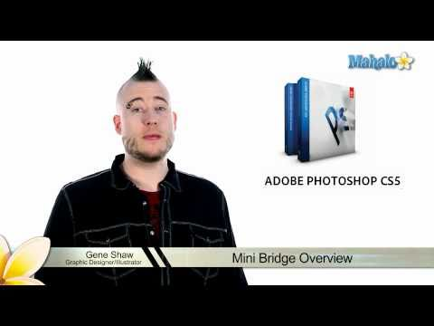 Learn Adobe Photoshop - Mini Bridge