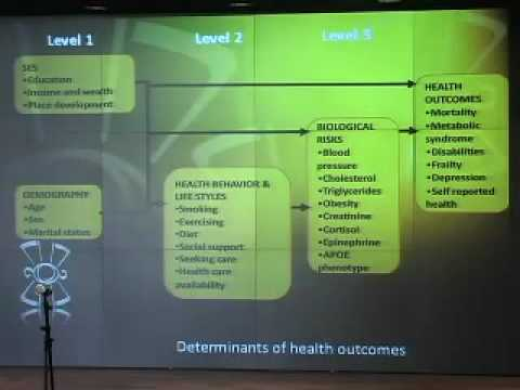 The Mexican Institute of Geriatrics and Hispanic Health: An