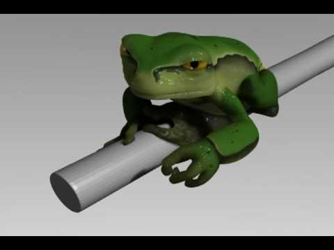 Alcoholic Frog 3