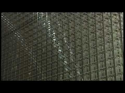 CERN News 31st May 2010: First Appearance of a Tau Neutrino