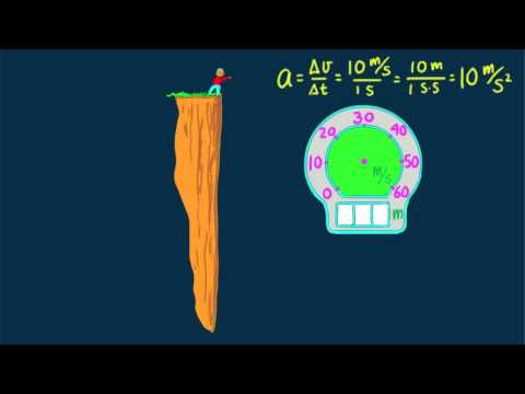 Hewitt-Drew-it! PHYSICS 12.Free Fall