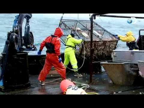 Deadliest Catch - Not A Good Day