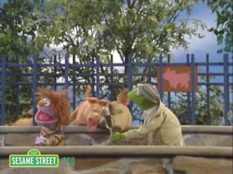 Sesame Street: Kermit News On Children's Zoo