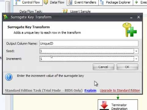 Task Factory Demo - Surrogate Key Transform
