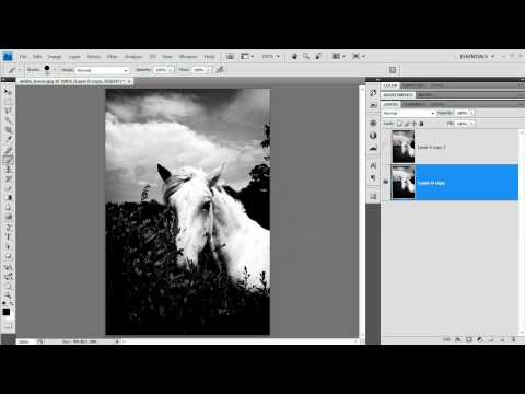[HD] Super Quick Black and White Photos: Photoshop Tutorial!