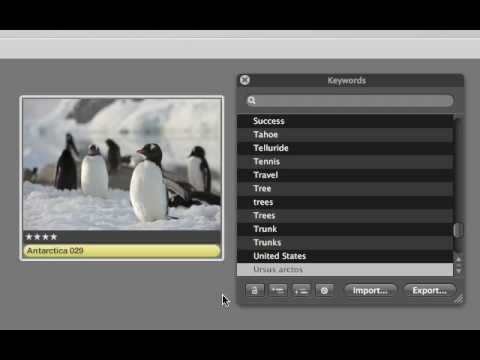 Aperture 3 Tutorials : 2.5 - Organizing - Ratings, Keywords, Labels, and Flags