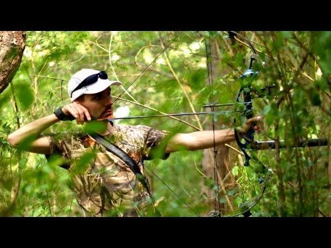 Elk and Moose Hunting Tips | Archery and Bow Hunting