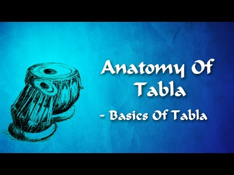 Anatomy Of Tabla - Basics of Tabla