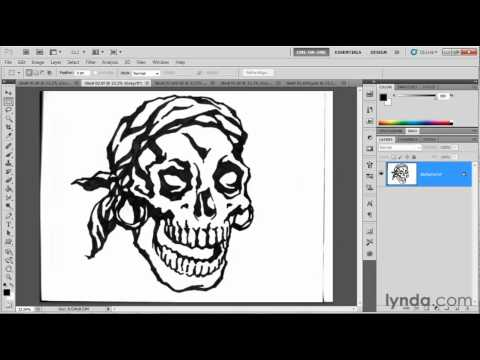 Preparing Photoshop artwork for use in Illustrator | lynda.com overview