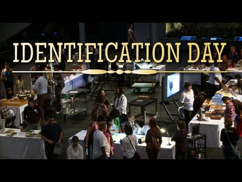 Identification Day 2012