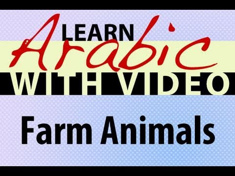 Learn Arabic with Video - Farm Animals