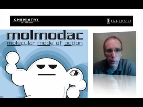 Molmodac Overview (5.1)