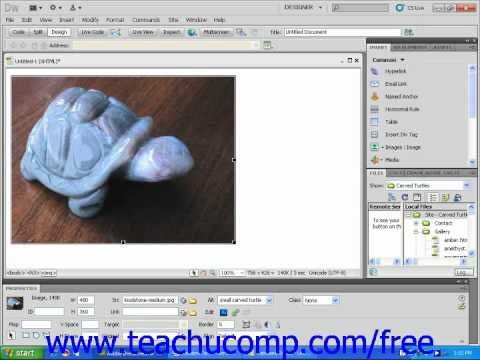 Dreamweaver CS5 Tutorial Borders and Spacing Around Images Adobe Training Lesson 4.6