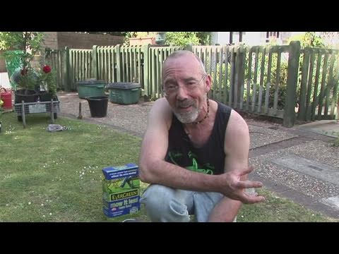 How To Fertilize Your Own Lawn
