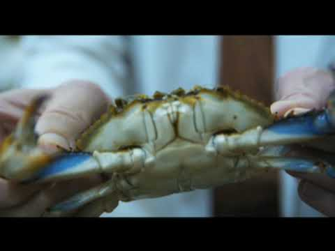 Soft-Shell Crabs Created On Demand?