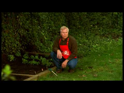 How to Plant a Garden in a Raised Bed - The Home Depot