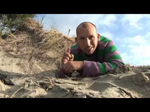 Coastwatchers 2012 - #1 Introduction