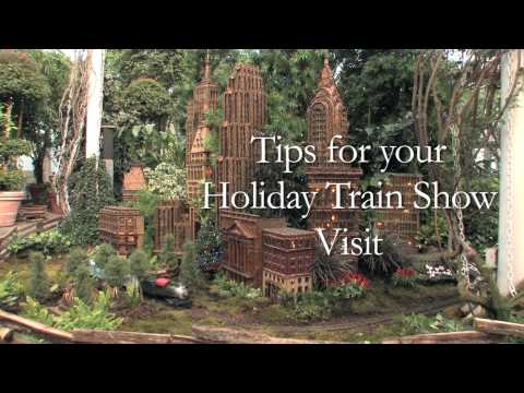 Tips for Your Holiday Train Show Visit
