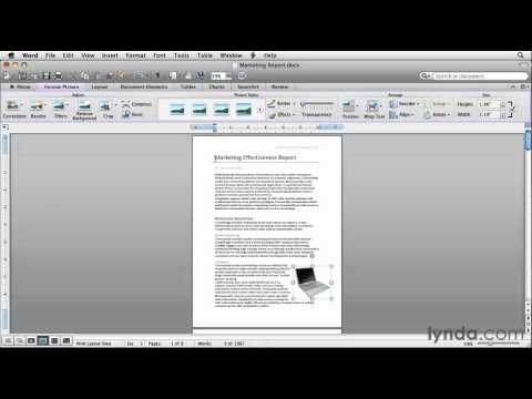 Exploring Microsoft Word's Ribbon | lynda.com overview