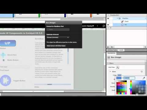 Flash Catalyst CS5.5 - Creating Check Boxes and radio buttons