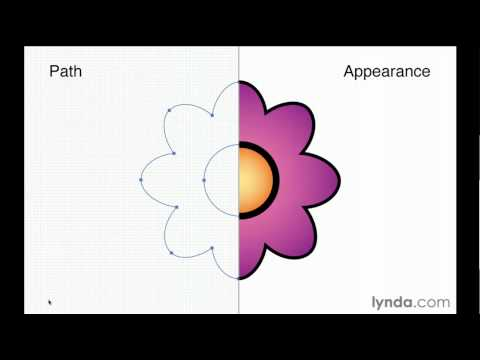 Illustrator: Understanding paths and appearances | lynda.com overview