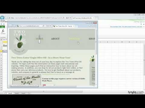 Office Web Apps tutorial: Adding hyperlinks to workbooks | lynda.com