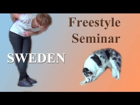 Beginning Canine Freestyle Sweden Seminar- clicker dog training
