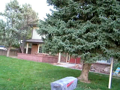 McFarland Court, Grand Junction, Colorado