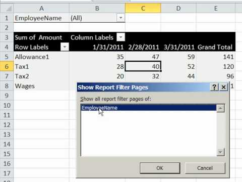 Excel 2010 Magic Trick 795: Pivot Table: Transactional Payroll Data Into Employee Reports PivotTable