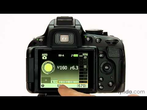 Nikon D5100 overview: Exploring the program mode | lynda.com