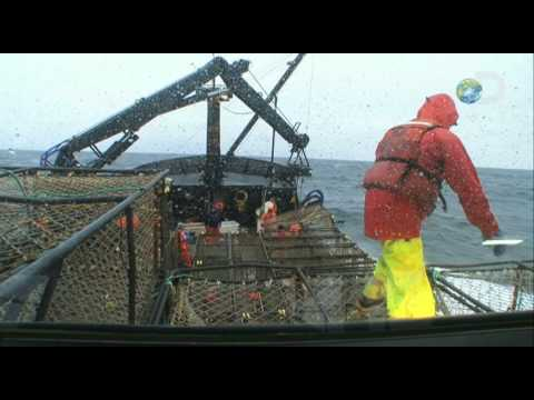 Deadliest Catch - Calm Before the Crab | Slow Burn