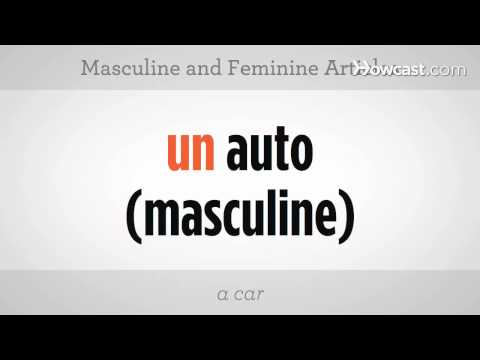 Learn Spanish / Masculine and Feminine Articles