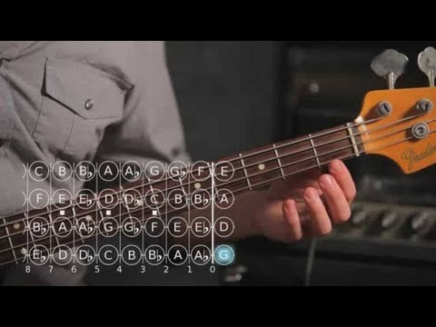 Bass Scales: How to Play the D Sharp/E Flat Major Scale
