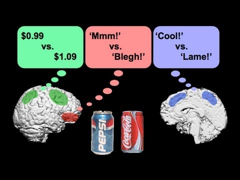 The Brain: A Machine Built of Conflicting Parts